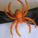Black Bow W/ Spider