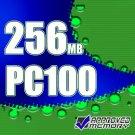256MB RAM Memory Dell Inspiron 8000 Latitude CSx C800