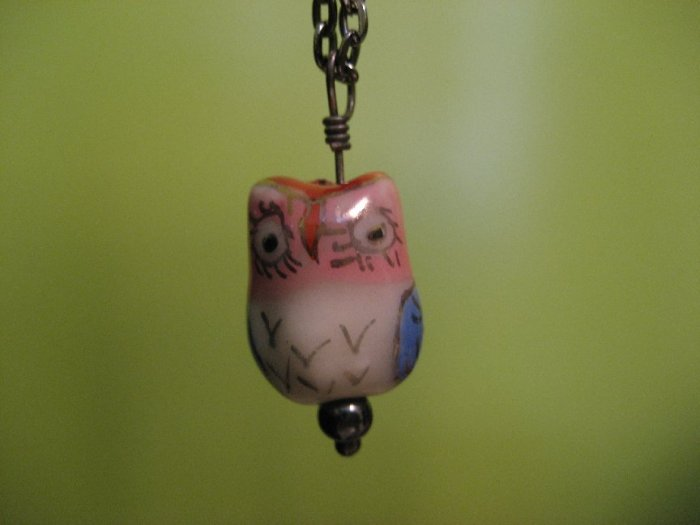 Long Lash Owl