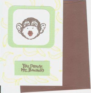 Monkey Anniversary
