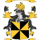 Campbell Coat of Arms in Cross Stitch PATTERN CHART FAMILY NAME HERALDRY