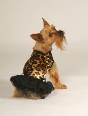 Leopard Print Tank Dress With Matching Hat/Collar XX Small Dog Dress