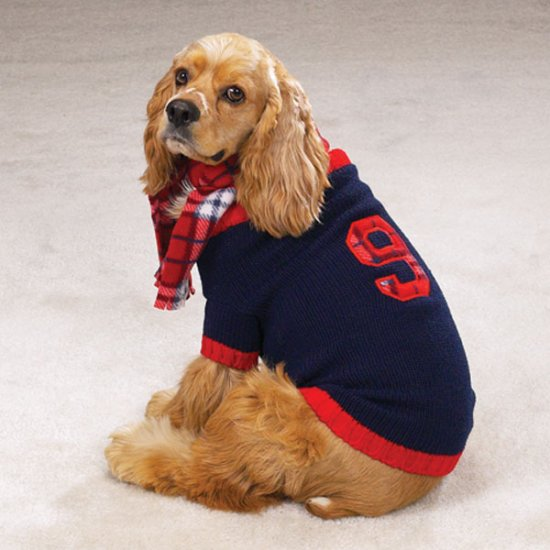 Casual Canine English Rugby Dog Sweater with Plaid Scarf Small