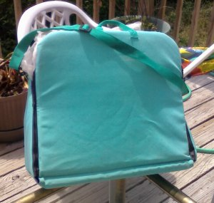 Pool chair float, umbrella and pad - all-in-one compact carry all