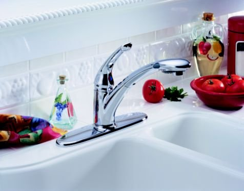 Signature Kitchen Pull-Down/Out Faucet
