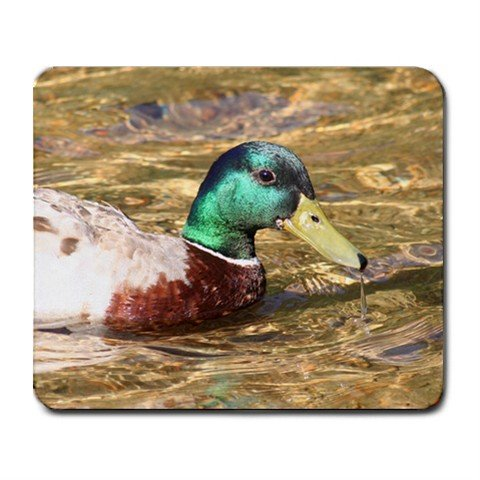 Mousepad Really nice duck, look up close, very clear water FREE SHIPPING