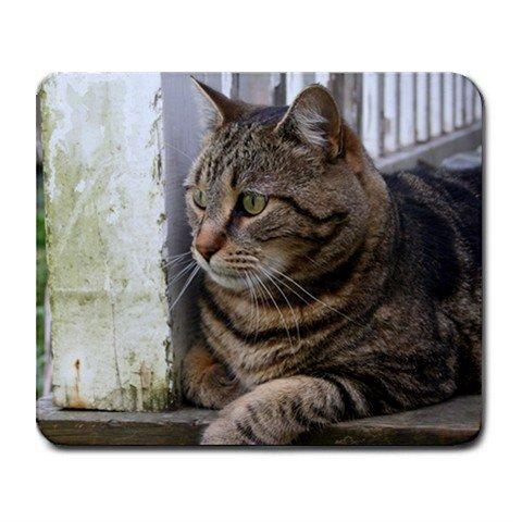 Mousepad The Guard Cat!           FREE SHIPPING