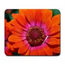 Mousepad FREE SHIPPING