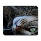 Mousepad FREE SHIPPING Big Guard Cat's Nose
