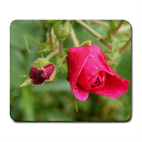 Mousepad FREE SHIPPING Bright pink rose and bud