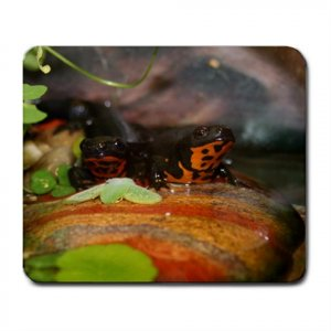 Mousepad FREE SHIPPING Power Newt and Hemi (wife) sitting on their rock together Firebelly Newts