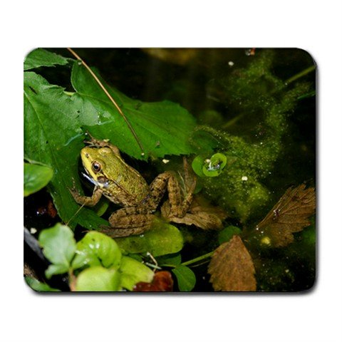 Mousepad FREE SHIPPING Cute little froggie in the pond   :)