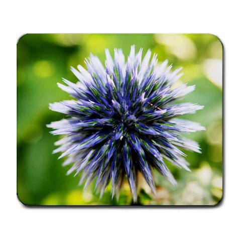 Mousepad FREE SHIPPING globe thistle flower
