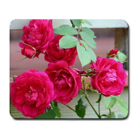 Mousepad FREE SHIPPING really nice dark pink roses