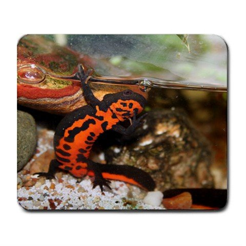 Mousepad FREE SHIPPING Power Newt Waves *hello!*
