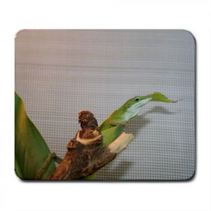 Mousepad FREE SHIPPING Zood in her banana leaf