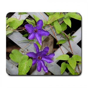 Mousepad FREE SHIPPING Purple Clematis