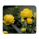 Giant ButterCups Flowers Summer Mousepad  NEW   Free shipping