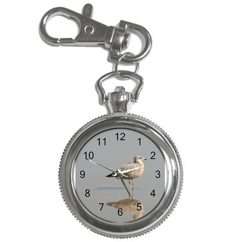 Pocket Watch Seagull at the ocean in the summer