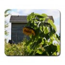 Giant Sunflower, Mousepad  NEW   Free shipping