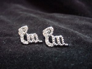 Roco Wear Logo Earrings