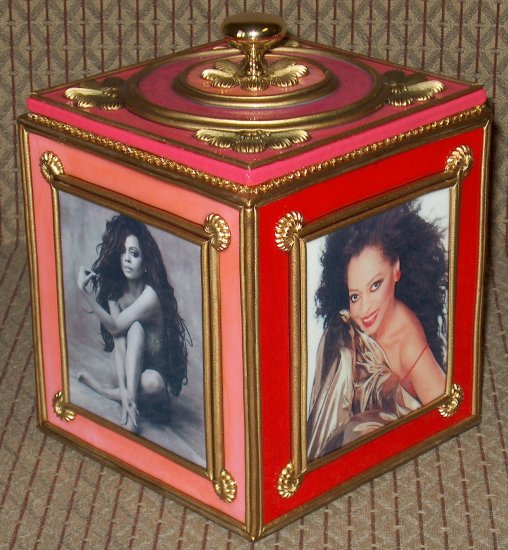 DIANA ROSS Custom-Designed Bookshelf CD Storage Box