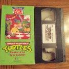 Teenage Mutant Ninja Turtles Invasion of the Turtle Snatchers Vhs Tape Video 1M
