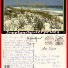 Post Card FL Florida Sea-Oats 1991 post card OLD 15 cent stamp 1991