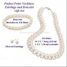 Necklace & Bracelet & Earring Gift Set Perfect Poise 3 Piece SILVERTONE ~NEW~