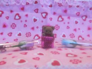 Valentine's Day Bears in a box Magnet