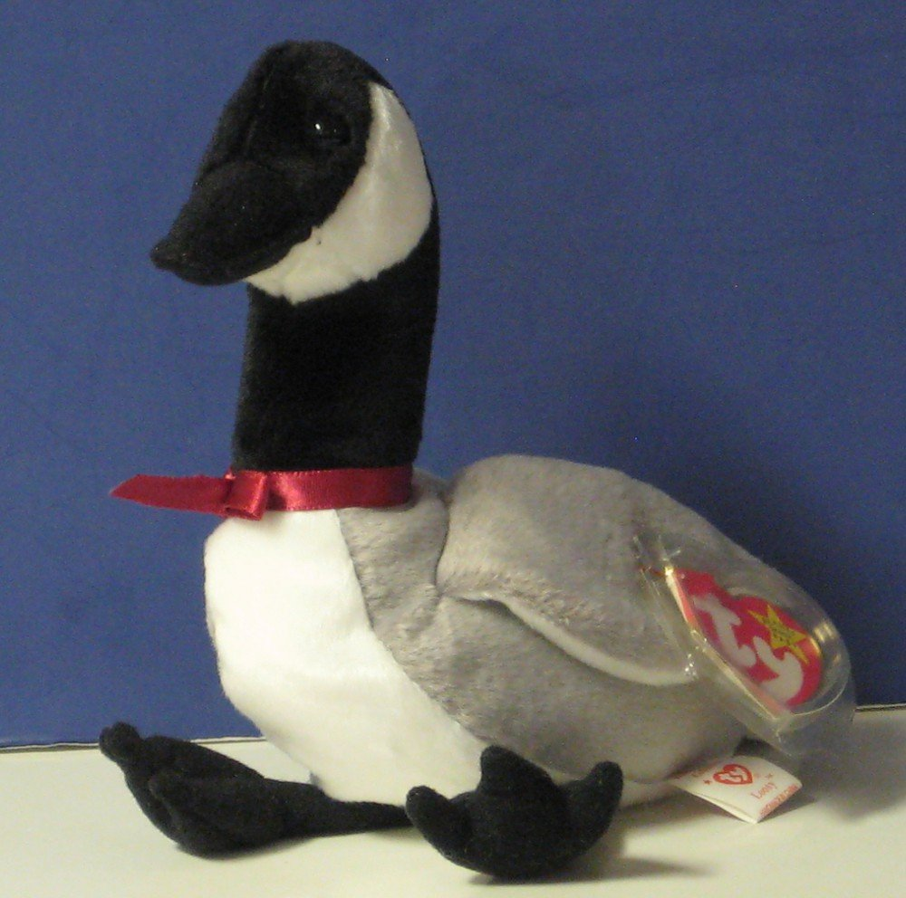 Beanie Babies Canada Goose Loosy 6 Quot 1998 With Tags Ty