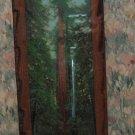 Souvenir Decoupage Redwood Forest Decorative Wood Wall Plaque - 1984 Vintage