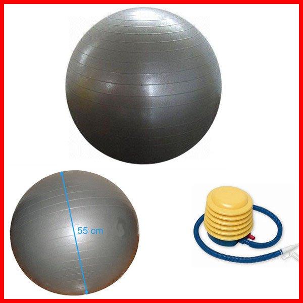 55cm Yoga Balance Ball Exercise Ball with Pump/Purple