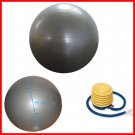 55cm Yoga Balance Ball Exercise Ball with Pump/Purple