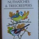 Chickadees, Tits, Nuthatches, & Treecreepers