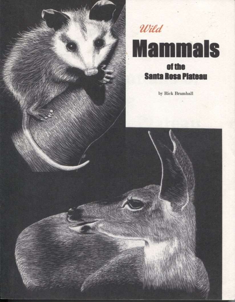Wild Mammals of the Santa Rosa Plateau