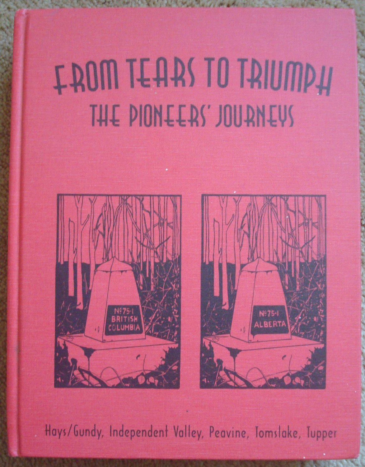 From Tears to Triumph: The Pioneers' Journey