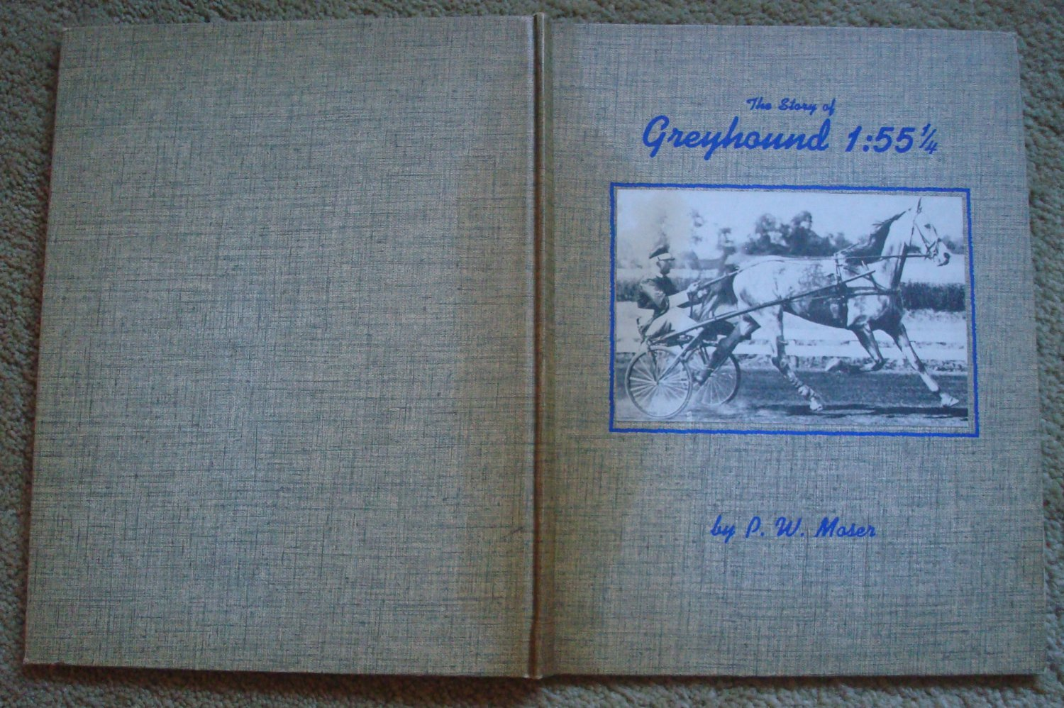 The Story of Greyhound 1:55 1/4 - Harness Racing Hall of Fame Trotter