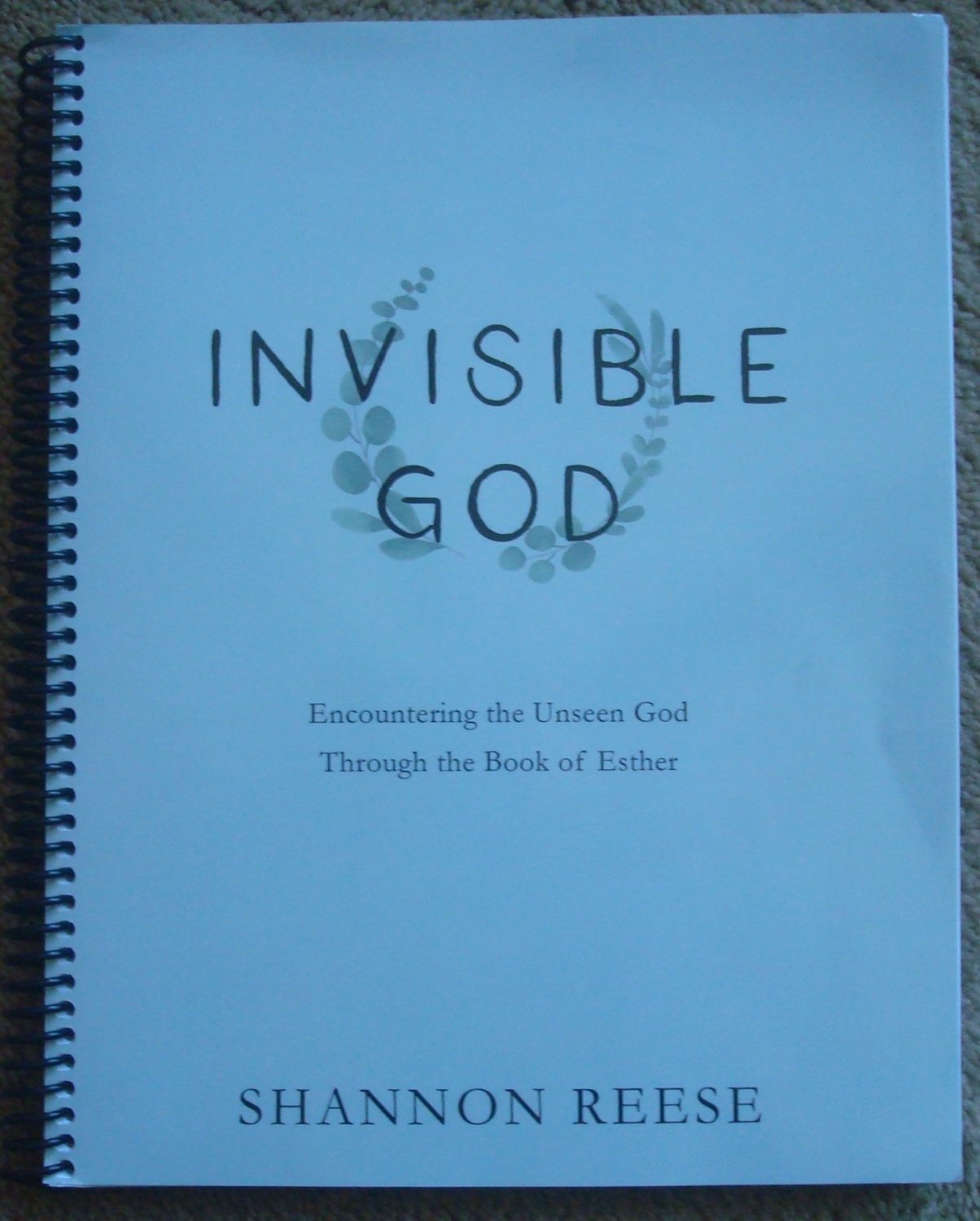 Invisible God: Encountering the Unseen God Through the Book of Esther