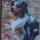 The Australian Shepherd Annual 2000