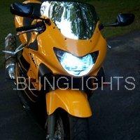 2003 APRILIA TUONO FIGHTER HID XENON HEAD LIGHT LAMP HEADLIGHT HEADLAMP KIT 03