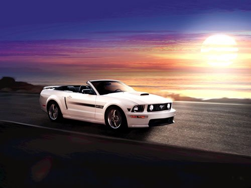 """Ford Mustang 45th Anniversary Car Poster Print on 10 mil Archival Satin Paper 16"""" x 12"""""""""""