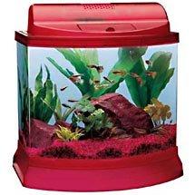 Mini Bow 5-Gallon Aquarium Kit