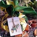 Sugar Free Farmer Fred's Corn Muffin Mix Bandana Gift Set~Splenda