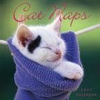 CAT NAPS 2007 MINI WALL CALENDAR