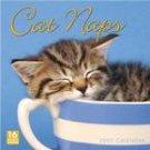 CAT NAPS 2007 WALL CALENDAR