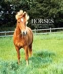 HORSES 2007 HARDCOVER ENGAGEMENT CALENDAR-FREE SHIPPING!
