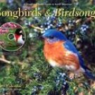 SONGBIRDS AND BIRDSONGS 2007 DELUXE WALL CALENDAR