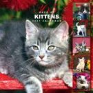365 DAYS OF KITTENS 2007 WALL CALENDAR