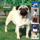 365 DAYS OF PUGS 2007 WALL CALENDAR